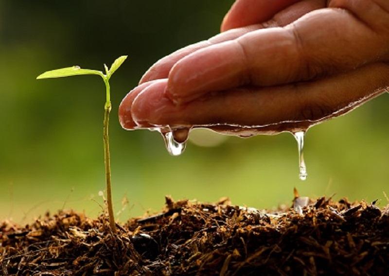 "AICTE sponsored one week Online STTP program on ""Forum for Nurturing Clean-Water and Green-Waste"""